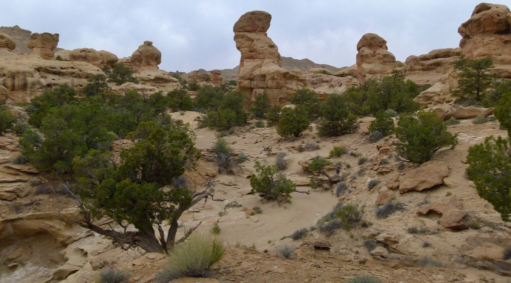 Pillar Canyon