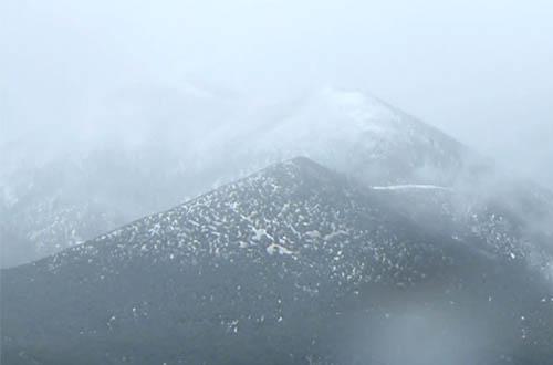 Henrys Snow