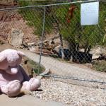 Rockville Catastrophe Site