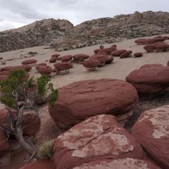 Hamburger Rocks