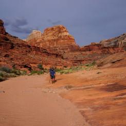 Wide-open canyon near Triple Junction