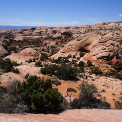 Looking west to Navajo Domes from near top of Fold
