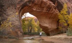 Below Coyote Bridge in Fall