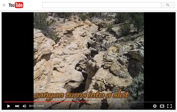 video_Paradise