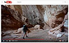 VideoThumb_2016