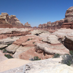 looking down Elephant Canyon from Druid Arch