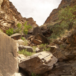 northern gulch route