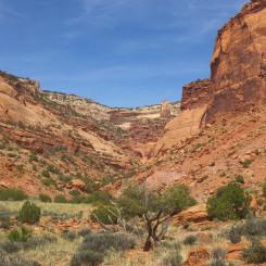 North Trail Canyon